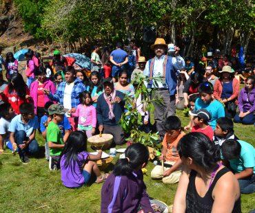 Campamento de Verano enero 2015